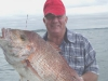 anchorage-charters-paihia-als-20lber